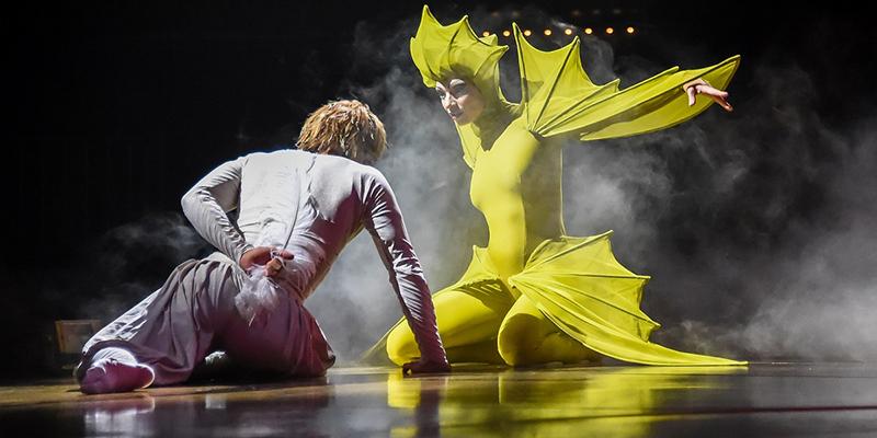 Cirque du Soleil revine la București cu spectacolul Varekai