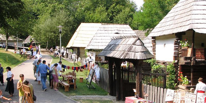 Wi-Fi gratuit în Muzeul în aer liber din Dumbrava Sibiului!