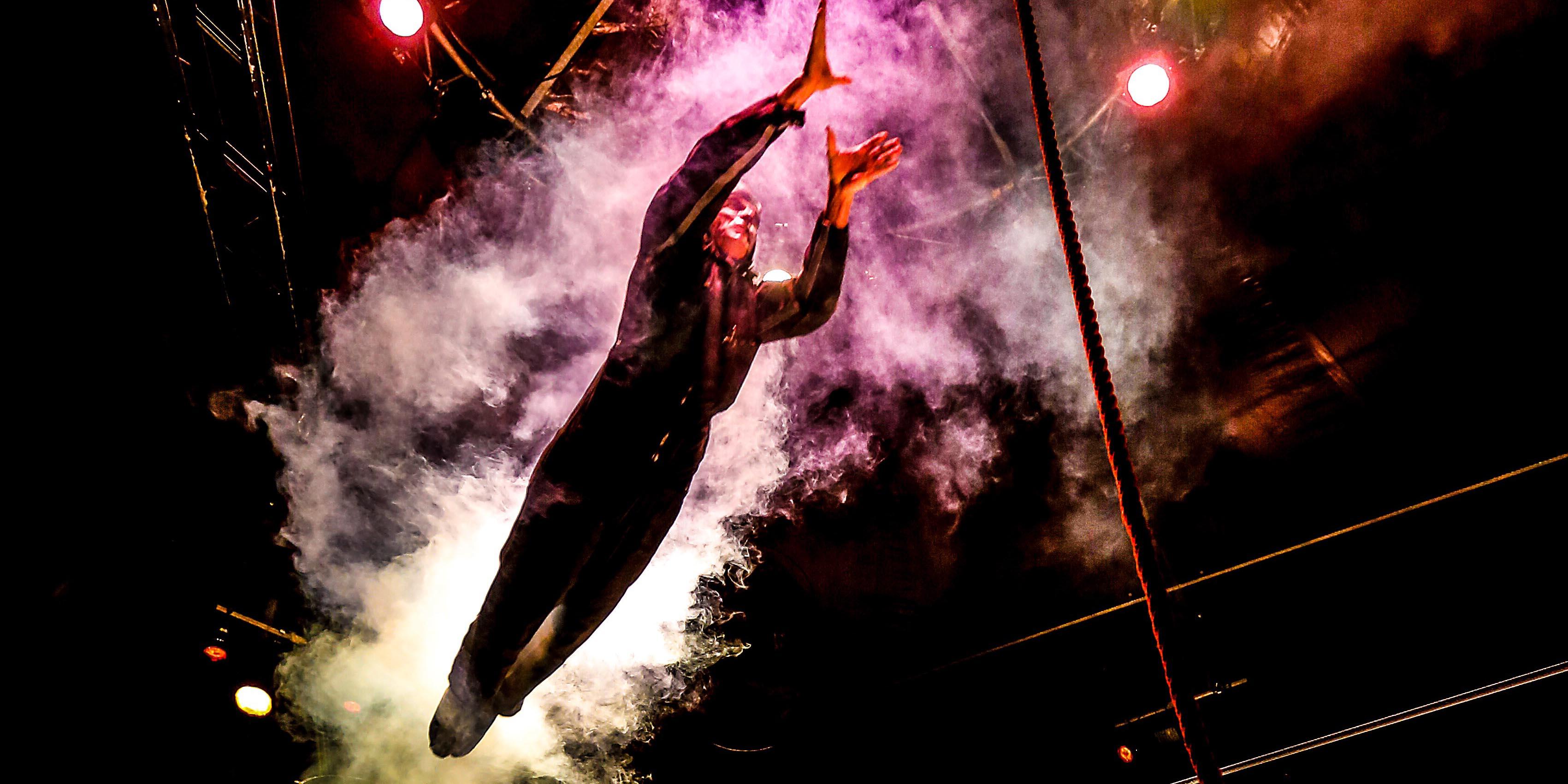 David Dimitri într-un spectacol de circ contemporan la FITS 2017